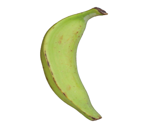 Unripe Plantain - Medium