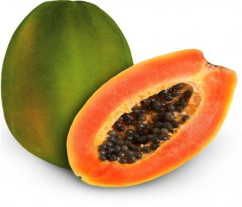 Pawpaw(American Pink Solo)